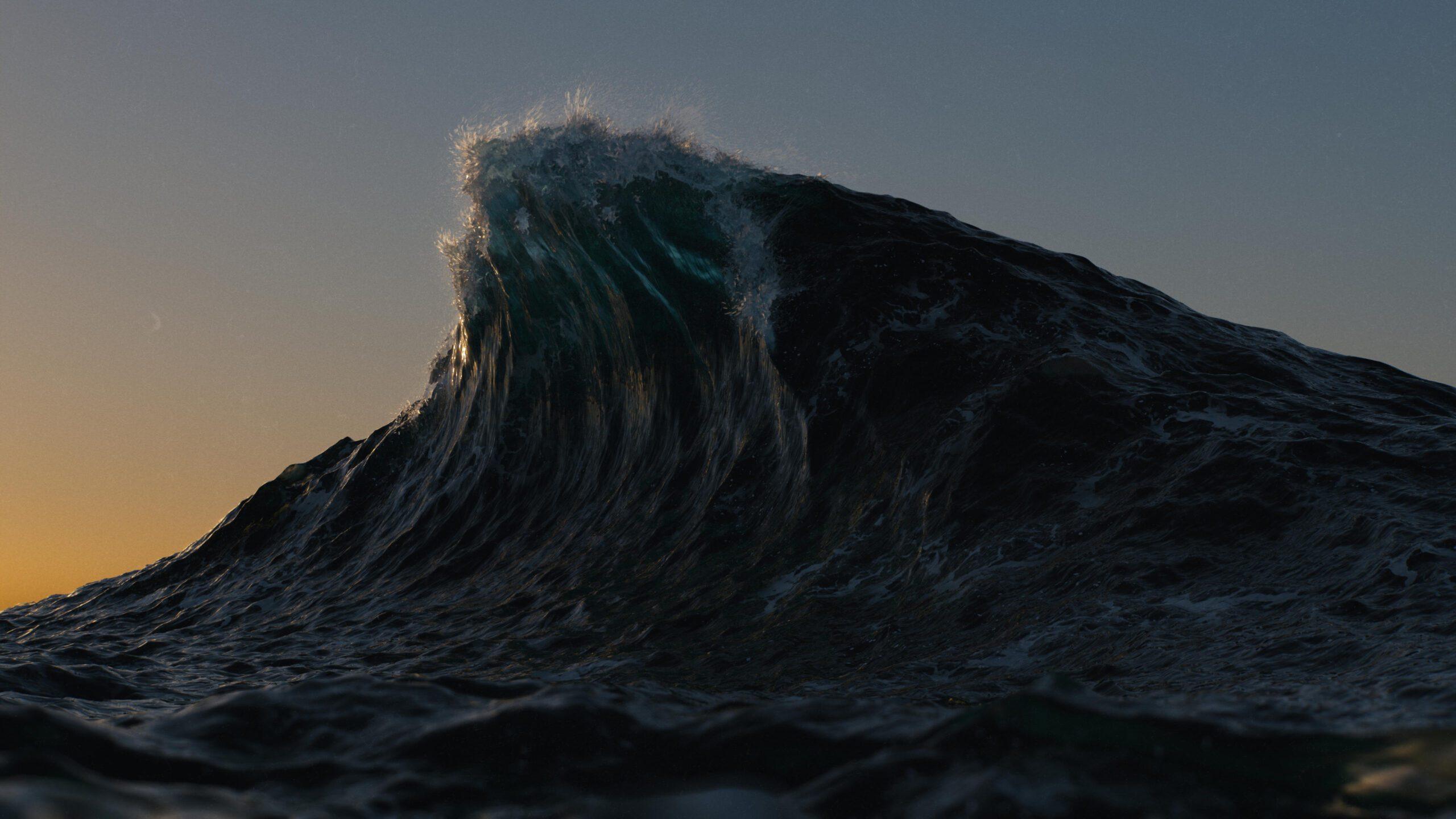 wave_comp_web